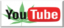 You Tube - one of the best Cannabis Seed Growing Resources available!